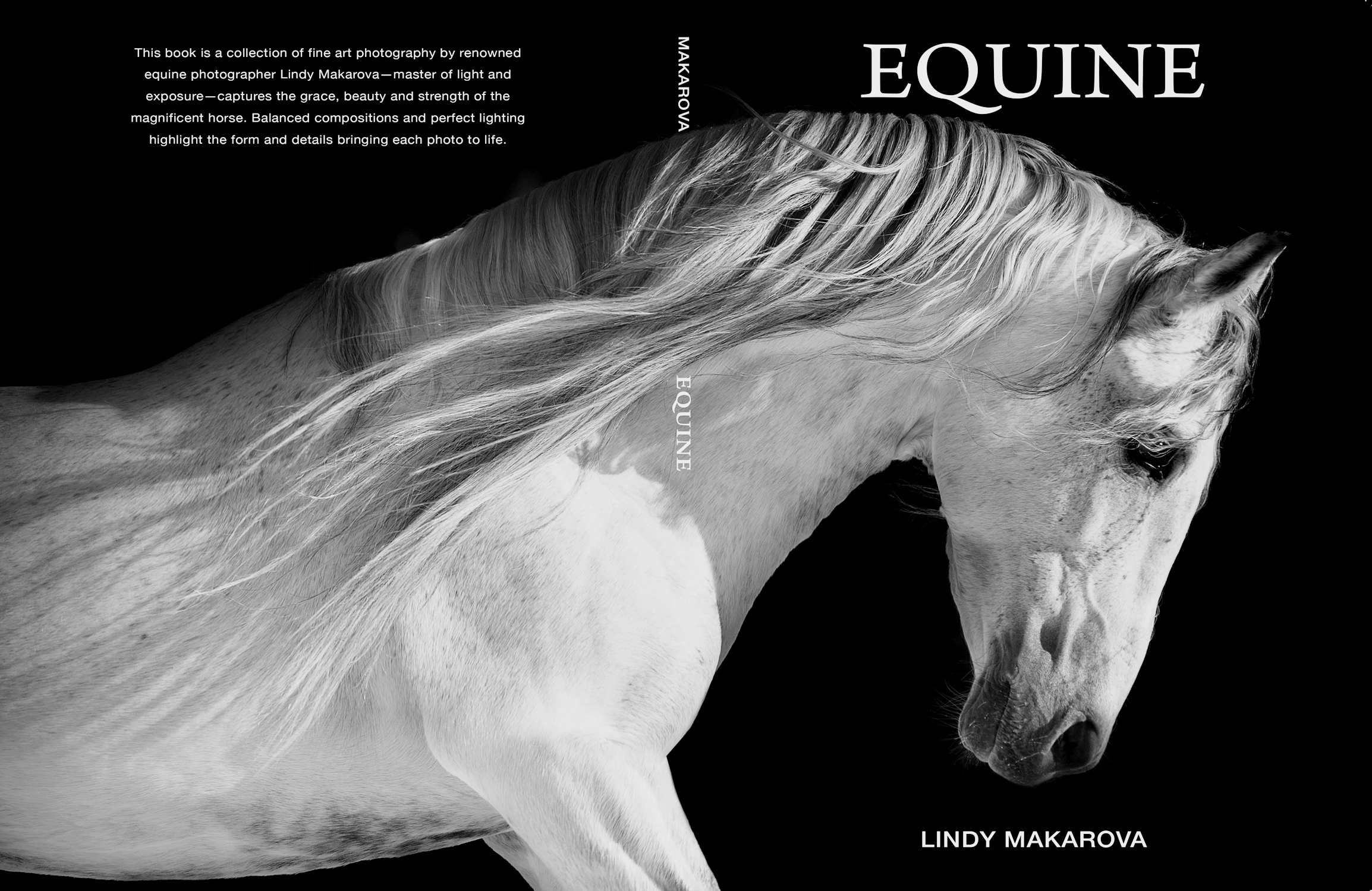 A book cover of a white horse on a dark stock with vivid hues.